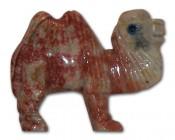Chameau (petit modèle)