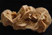 Rose des sables pièces de 250 à 350 grammes
